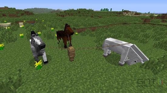 Une nouvelle mise à jour annoncée pour Minecraft > Creanum