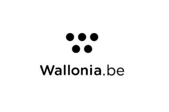 La Wallonie s'offre une nouvelle identité visuelle pour 500 000 euros > Creanum