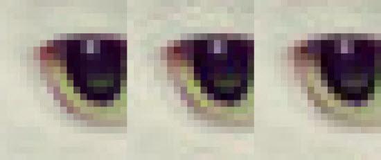 Des fichiers JPEG compressés jusqu'à 35% avec Google Guetzli > Creanum
